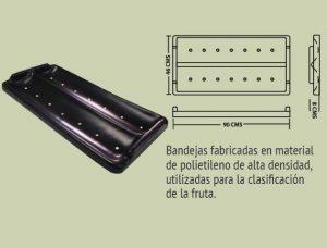 Plásticos-Medellín-Bandejas-003 ref bandeja para papaya